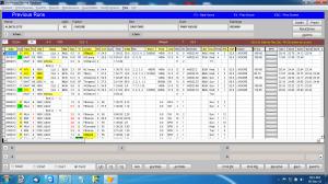 previous-runs-1